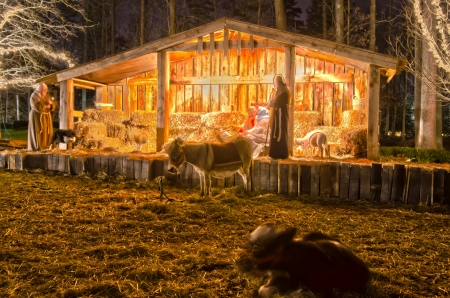 charlotte, nc - visitors viewing live nativity play during christmas at billy graham library, charlotte, nc photo
