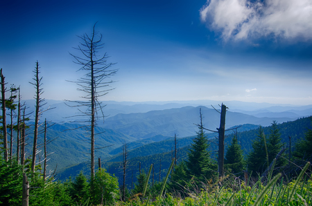 A wide view of the Great Smoky Mountains from the top of Clingmans Dome Stock Photo