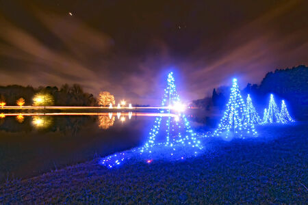 outdoor christmas decorated trees near a lake