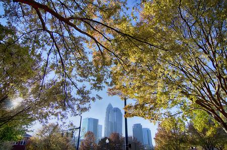 autumn in charlotte city of north carolina 版權商用圖片