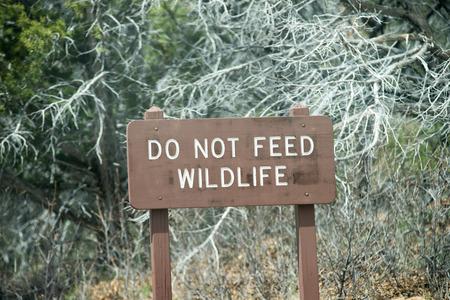 do not feed wildlife sign photo