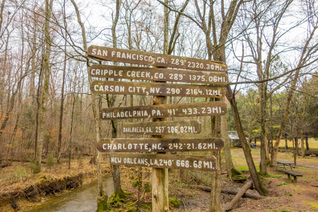 carson city: wooden direction sign in the forest