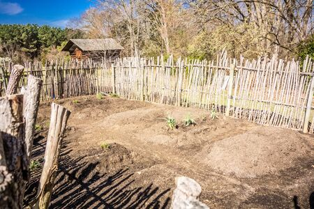 fenced in: Small vegetable garden with risen beds in the fenced backyard