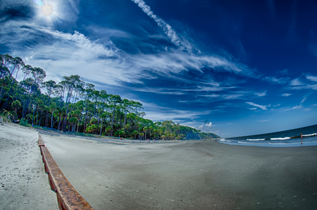 beach scenes at hunting island south  carolina Banco de Imagens