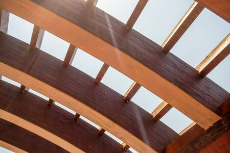 canopy: trellis design canopy details