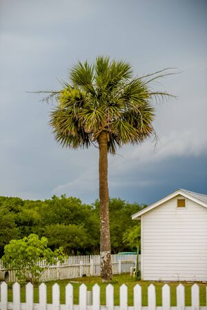 nautical structure: Tybee Island Light with storm approaching Stock Photo