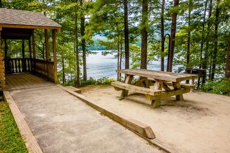 lake dwelling: Log cabin surrounded by the forest at lake santeetlah north carolina usa