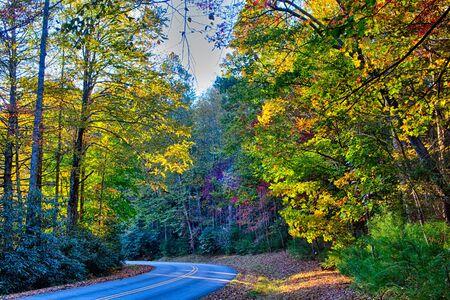 stone mountain north carolina scenery during autumn season 免版税图像