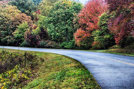 autumng season in the smoky mountains