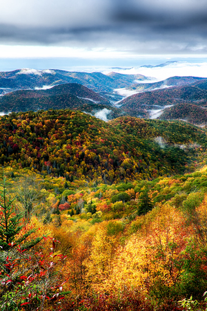 autumn foliage on blue ridge parkway near maggie valley north carolina