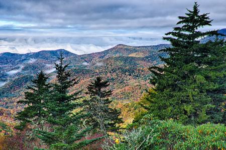 asheville: autumn foliage on blue ridge parkway near maggie valley north carolina