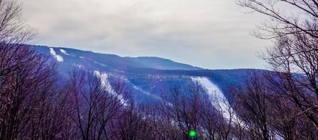 landscapes around town of snowshoe west virginia 版權商用圖片
