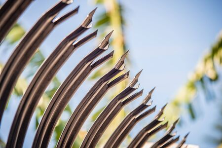 spikey: high security spiked fence