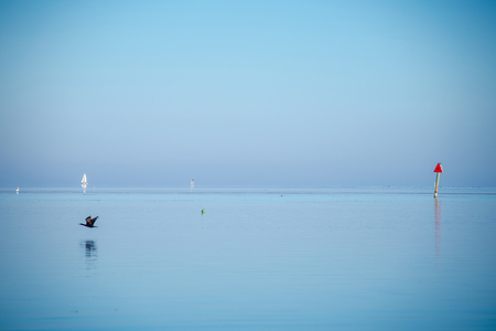 turqoise: tranquil nature in florida keys Stock Photo
