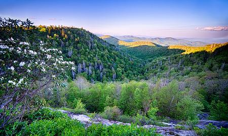 wnc: Springtime at Scenic Blue Ridge Parkway Appalachians Smoky Mountains