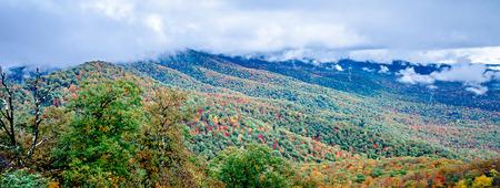 hardwoods: autumn season on blue ridge parkway Stock Photo