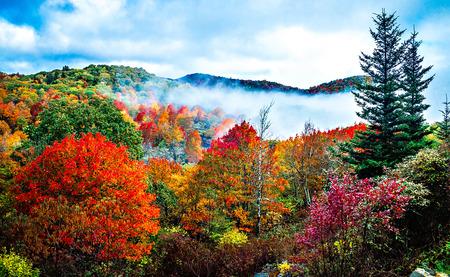 ブルーリッジ ・ パークウェイに秋のシーズン