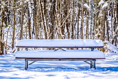 Tavolo da picnic innevato in parco Archivio Fotografico - 72300366