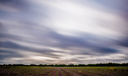 spring time on a farm with long exposure sky