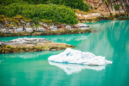 Icebergs from the North Sawyer Glacier in the Tracy Arm in Alaska