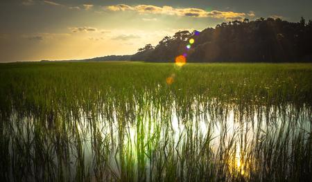 edisto south carolina plantation marchland wet lands at sunset