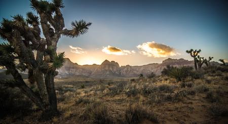 red rock canyon las vegas nevada at sunset