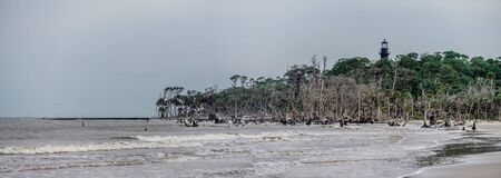 hunting island beach and lighthouse in south carolina