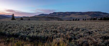 scenes around Hayden Valley in Yellowstone