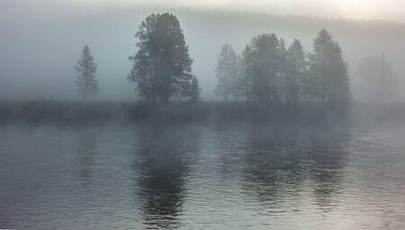 morning nature scenes in hayden valley yellostone wyoming Zdjęcie Seryjne