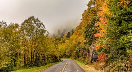 early morning autumn foggy photo at blue ridge parkway north carolina