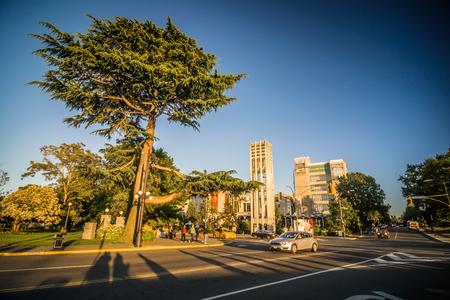 City of victoria british columbia in june 新聞圖片