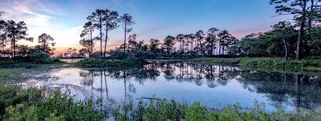 nature landscape scenes around hunting island state park in south carolina Banco de Imagens