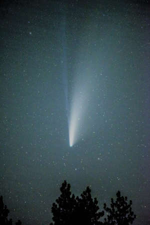 view of comet neowise in the night sky 版權商用圖片 - 153170890