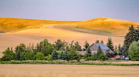 magical wheat farm fields in palouse washington 版權商用圖片 - 153170756