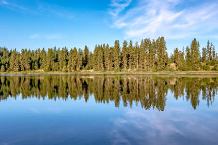 nature reflections at wilderness lake in washington state 版權商用圖片 - 153170208