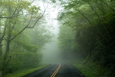 early morning drive through blue ridge parkway in spring 版權商用圖片 - 153333927