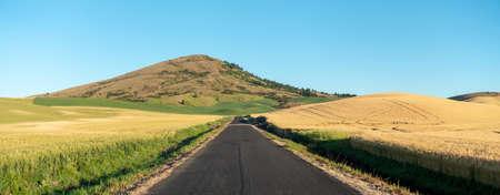 road to steptoe butte park in palouse washington 版權商用圖片 - 153170291
