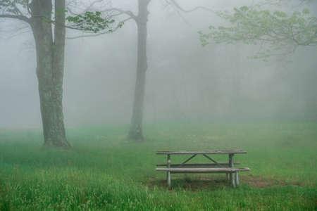 foggy morning in blue ridge mountains picnic area 版權商用圖片 - 153170180