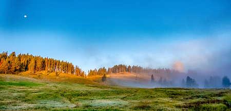 Hayden Valley, Yellowstone National Park