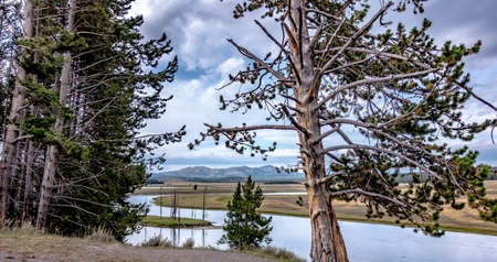 Hayden Valley and Yellowstone River, Yellowstone National Park