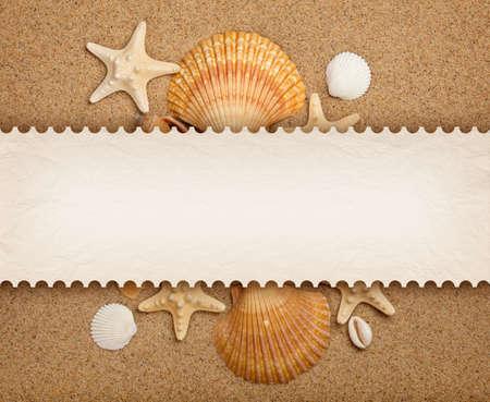 seashells: Shells, sand and blank card