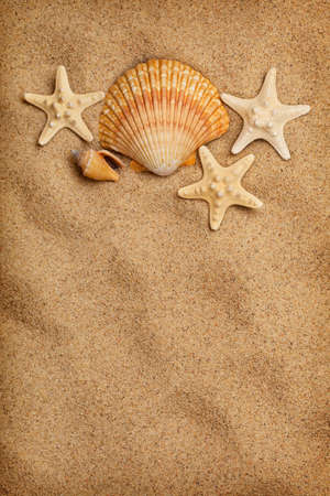 Sea life and beach - summer background Stock Photo