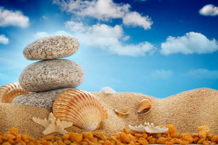 Vacation - Summer beach; stones and shells photo