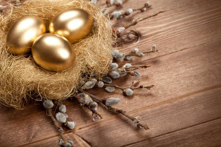 nest egg: Easter golden eggs in the nest