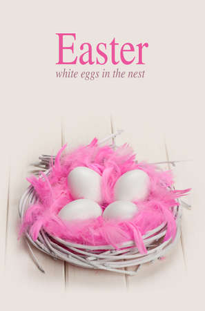 Pink and white Easter photo