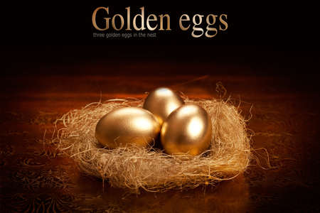 nest egg: Golden eggs in the nest