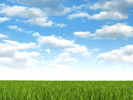 Nature background - meadow and blue sky Stock Photo - 13830372