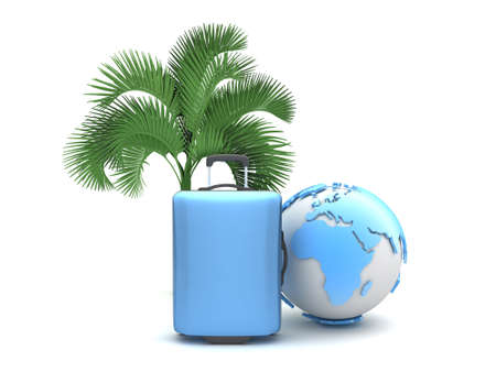 Travel bag, palm tree and earth globe isolated on white Stock Photo