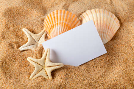 Starfish, seashells and blank paper sheet  photo