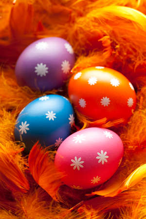 Colored Easter eggs in the nest photo